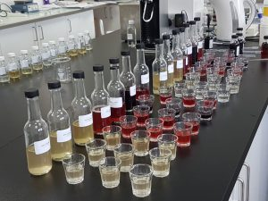 Image of Elfie shots laboratory samples in development lab