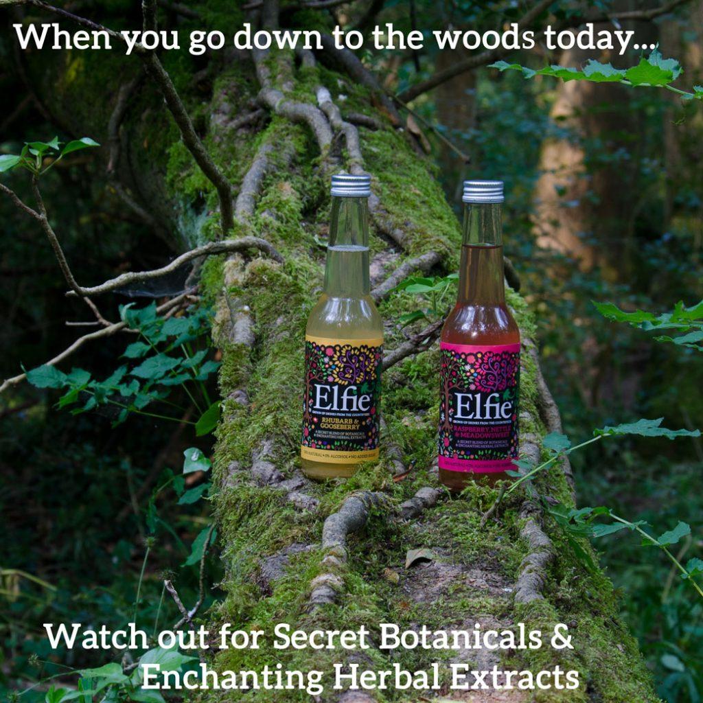 Picture: Elfie drinks - Botanicals in the woods